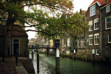 Dordrecht sur Bert Seinstra