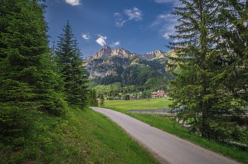 Austria - Tirol van