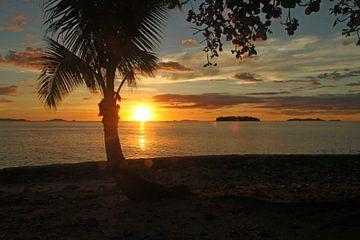 Typische zonsondergang met palmboom op Fiji eiland van Chris Snoek