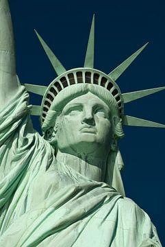 Statue of Liberty van bert van wijk
