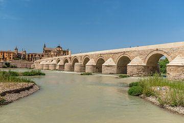 Uitzicht op  de stad Cordoba in Andalusie, Zuid Spanje van Fotografiecor .nl
