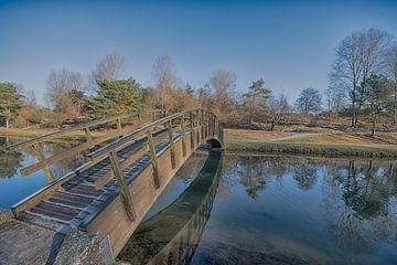 Houten bruggetje Amsterdamse waterleidingduinen van Peter Bartelings Photography