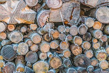 Een hoopje hout met rijp rijp van Thomas Heitz