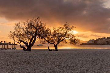 Sonnenuntergang am Strand von Santa Ponca von Dennisart Fotografie