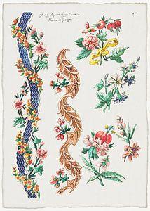 Blumenmuster und Blumenbänder, Giacomo Cavenezia