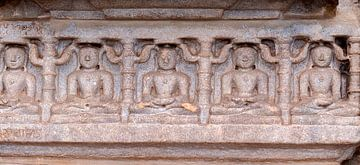 Ranakpur: Ranakpur Jain tempel van Maarten Verhees