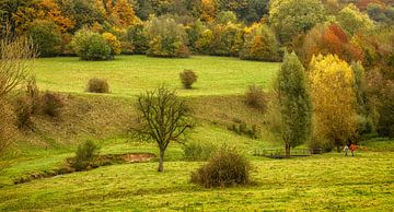 Herfstwandeling in Slenaken Zuid-Limburg van