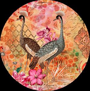 Kraanvogels in het Oosten van Andrea Haase