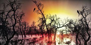 Paar raven bij zonsopgang in de heide van Max Steinwald