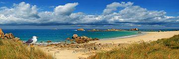 Panorama van de kust van Bretagne van