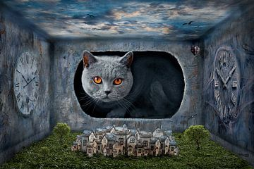 De kat waakt over de stad van Stefan teddynash