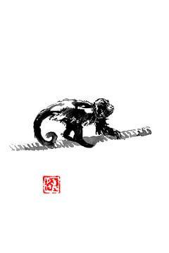 Affe auf Seilen von philippe imbert