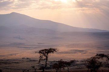 Ondergaande zon boven de Serengeti