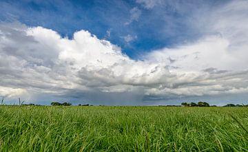 Hollandse wolkenluchten boven de polder von Sjoerd van der Wal