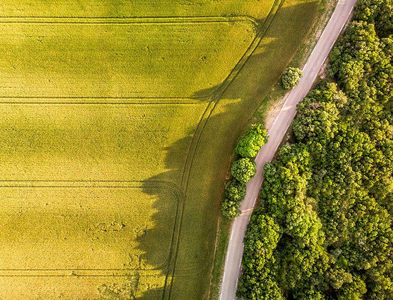 Boeren akker bij zonsondergang van Cynthia Hasenbos
