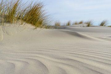 Petites dunes sur la plage sur Sjoerd van der Wal