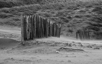 Storm on the beach van Robert Stienstra