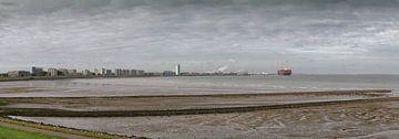 Terneuzen - Skyline - Waterfront - Panorama foto - met containerschip van Pixelatestudio Fotografie