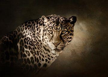 Leopard von Diana van Tankeren