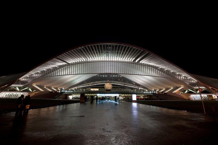 Station Luik (Liege) Belgie van Brian Morgan