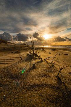 Het laatste beetje zon van Ard Jan Grimbergen