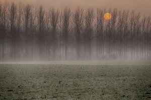 Zonsondergang in de nevel. van Filip Boogaerts