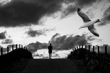 Birds 4 von Hans Levendig
