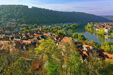 Uitzicht over Wertheim van Gisela Scheffbuch