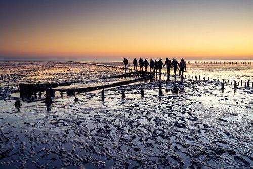 Wadlopers tijdens zonsopkomst bij Wierum.