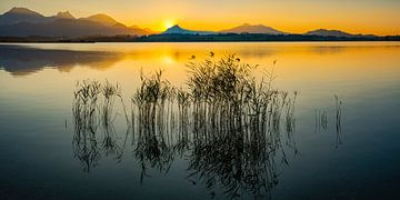 Sonnenuntergang, Hopfensee von Walter G. Allgöwer