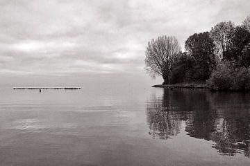 50 tinten grijs aan het Ijsselmeer von Bob Bleeker