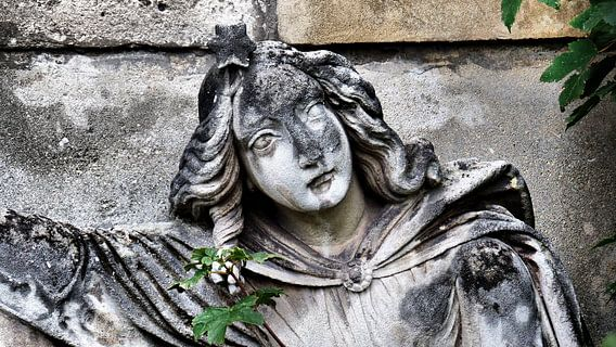 ...ein Land der Lebenden und ein Land der Toten V von Ilona Picha-Höberth