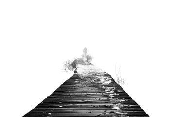 Verloren in einer nebligen Welt von Etienne Hessels