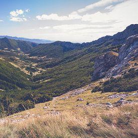 Col de la Bataille op het plateau  d'Ambel ( Vercors),  Frankrijk van Fotografiecor .nl