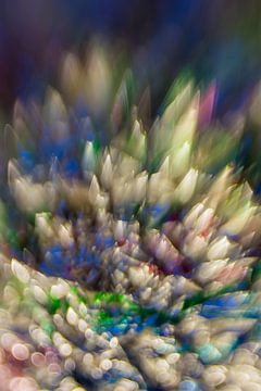 Kleur Explosie #3 von Robert Wiggers
