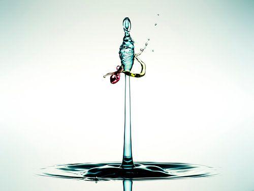 Water (Tricolor) van