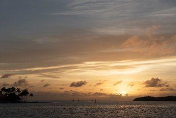 Sonnenuntergang in den Tropen von Margot van den Berg