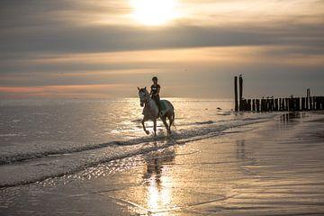 Ruiter en paard bij zonsondergang aan de Zeeuwse kust van Maarten Visser