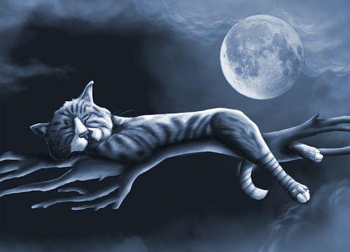 Slapende Kat in Maanlicht van Nathalie Antalvari