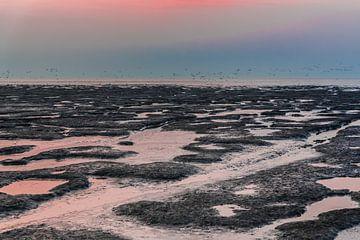 Pastelkleuren op het Wad bij laag water. van Margreet van Beusichem