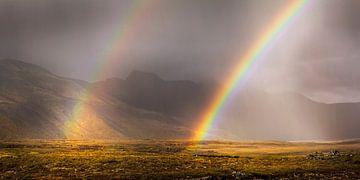 Landschap met dubbele regenboog in het zuiden van IJsland van Chris Stenger