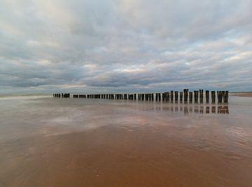 Palen in Zee von Peter Heins