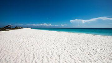 Tropischer weißer Strand - Kleines Curacao von Keesnan Dogger Fotografie