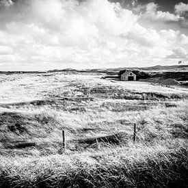 Schattig huisje in de Nederlandse duinen in Zwart-Wit   Callantsoog, Nederland   Natuurfotografie van Diana van Neck Photography