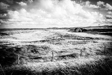 Niedliches Häuschen in den niederländischen Dünen in Schwarz-Weiß | Callantsoog, Niederlande | Natur von Diana van Neck Photography