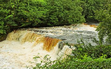 Aysgarth Middle Falls van Gisela Scheffbuch