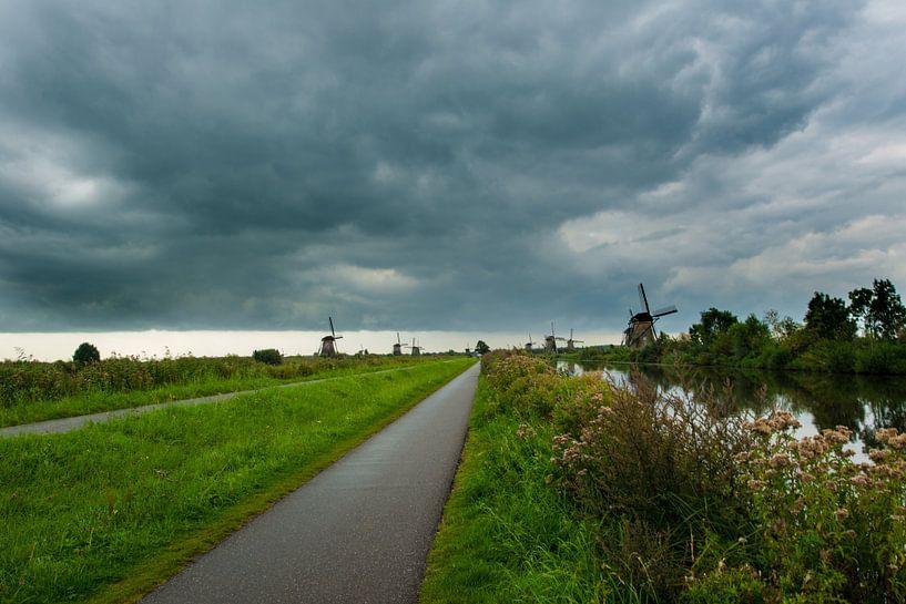 Kinderdijk Zuid Holland van Brian Morgan