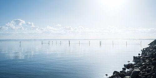 Hollands waterlandschap met reflectie van wolken en fuikpalen.