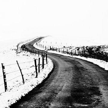 Der Weg ins Nirgendwo von Kees Kroon