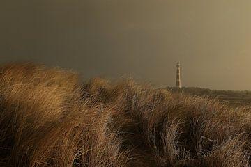 Vuurtoren Ameland van Rinnie Wijnstra